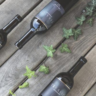 Vrhunsko vino Terasse Jeruzalem, laški rizling